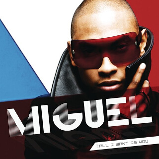06_All I Want Is You - Miguel.jpg